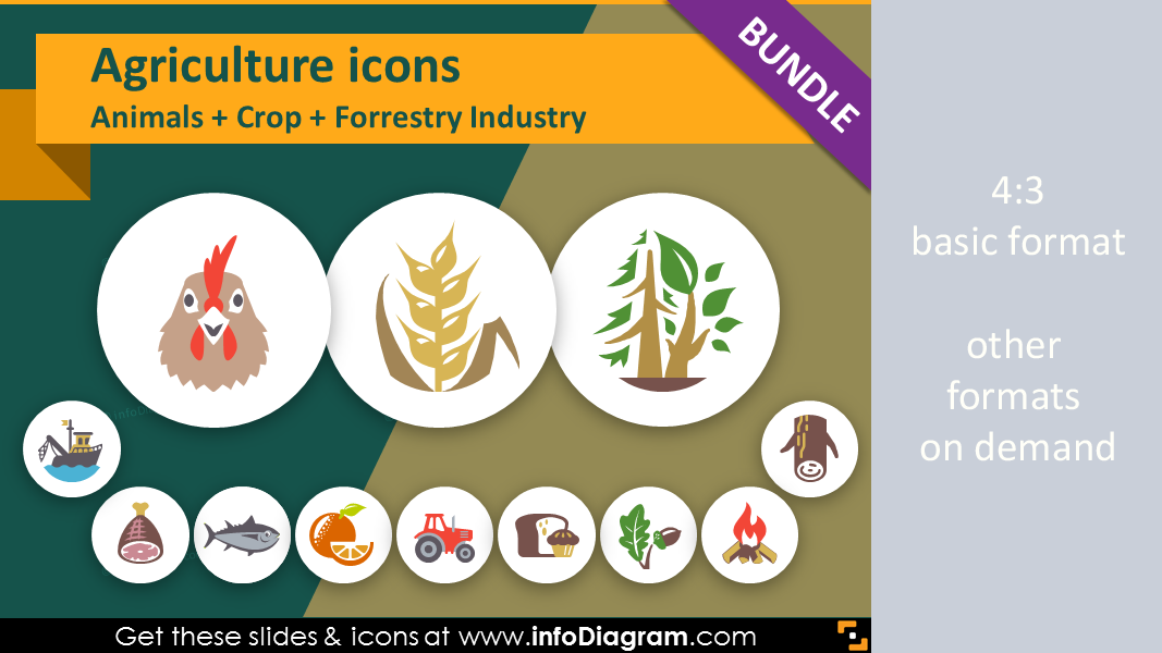 100 modern flat icons agriculture ppt presentation infographics food and agriculture icons bundle animals crop cultivation forestry ppt flat clipart toneelgroepblik Choice Image
