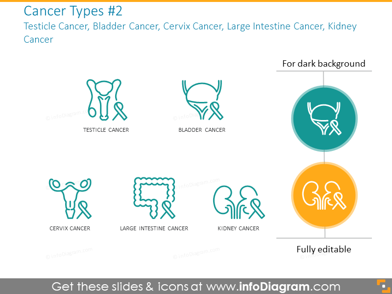 Testicle cancer, bladder cancer, cervix cancer, kidney cancer