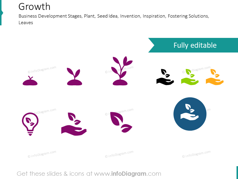 Growth Stages and Business Development icons