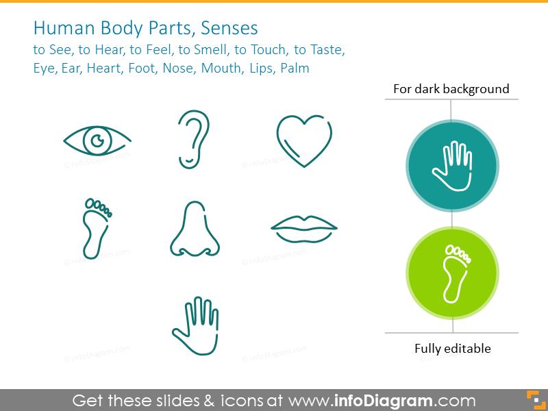 Human body outline symbols:Eye, Ear, Heart, Foot, Nose,Lips,