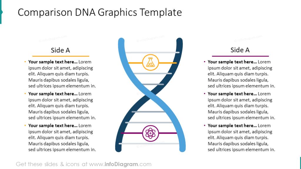 Comparison DNA Graphics Template