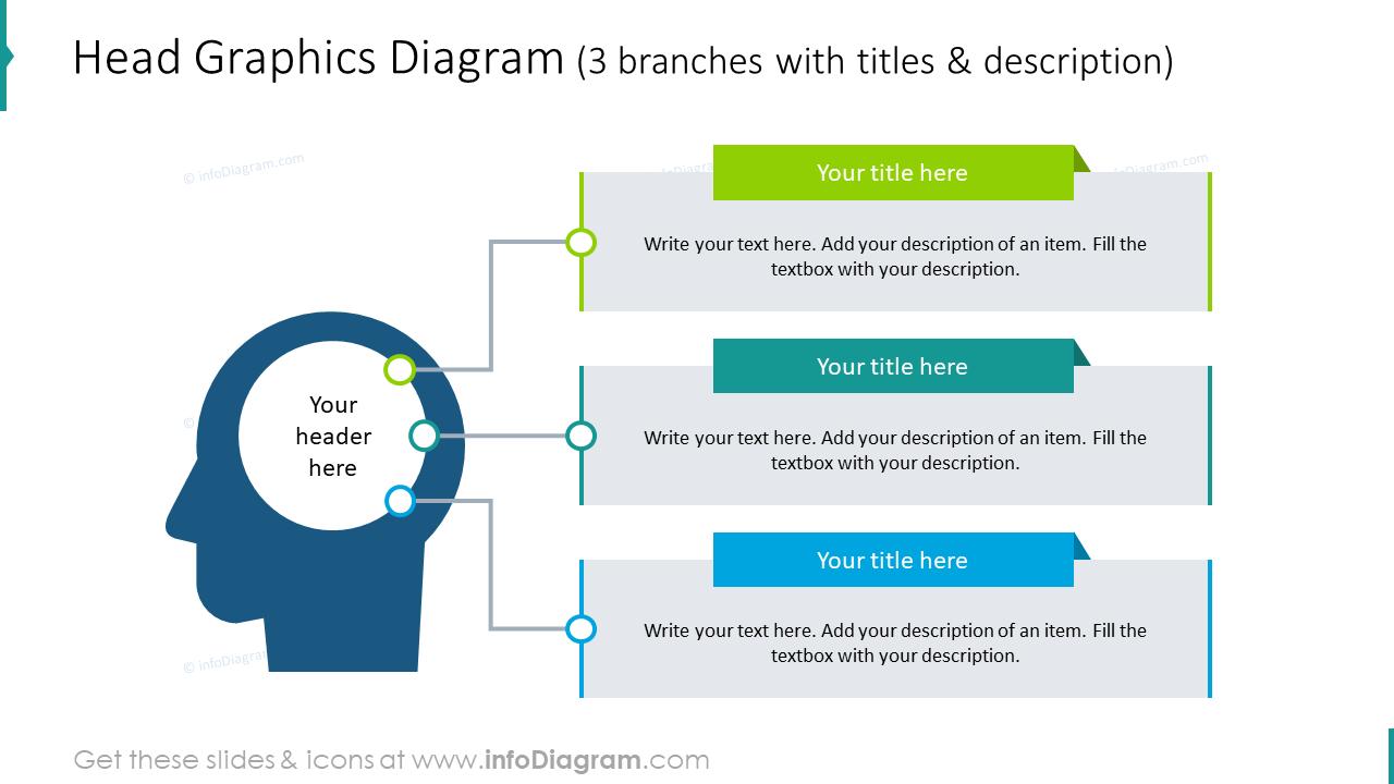 Head graphics diagram