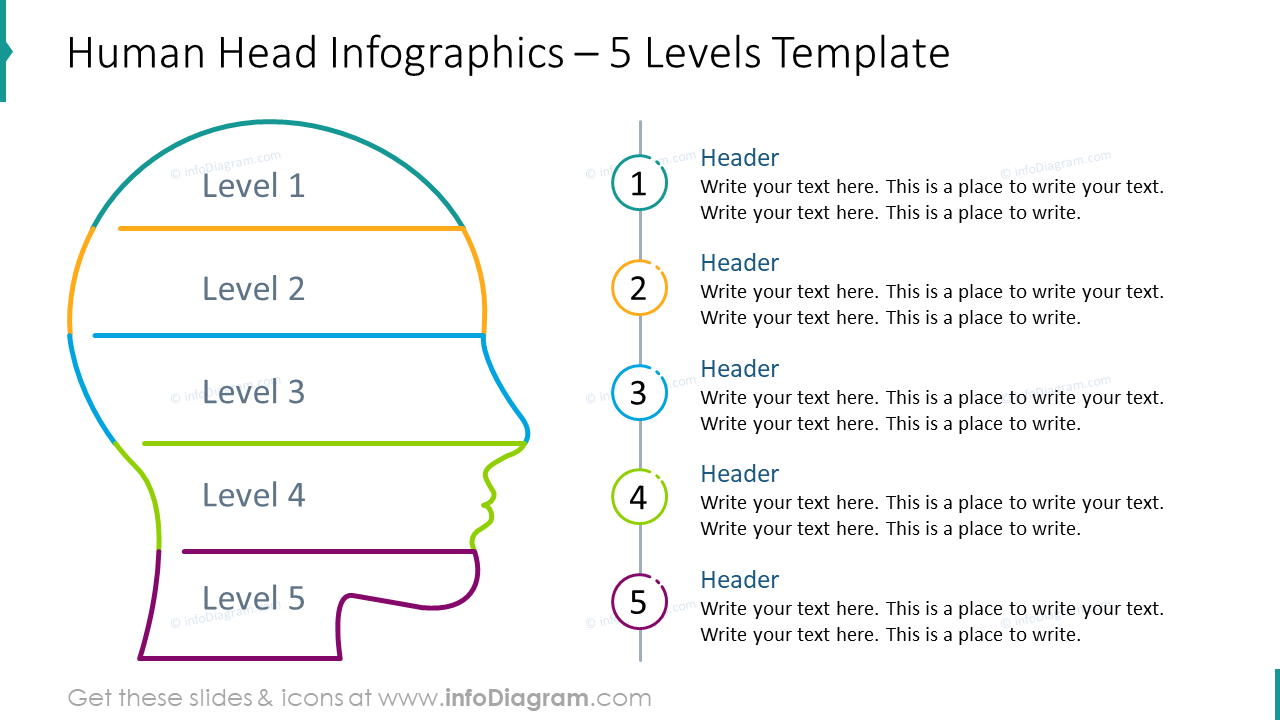 Head outline infographics for five levels template