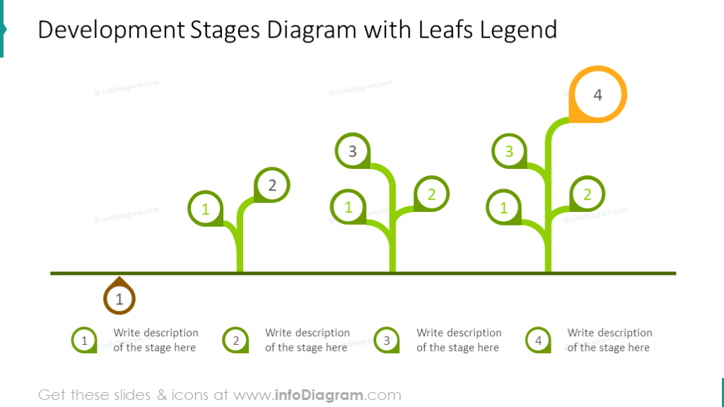 Development stages diagram illustrated with leaves legend