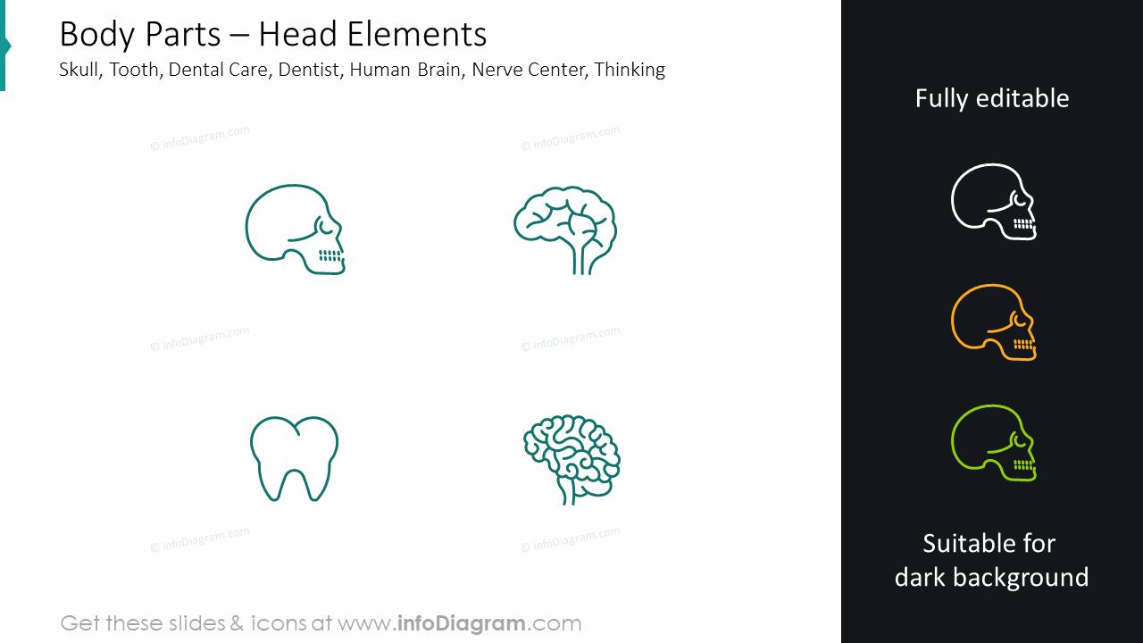 Head elements slide: skull, tooth, dental care, dentist