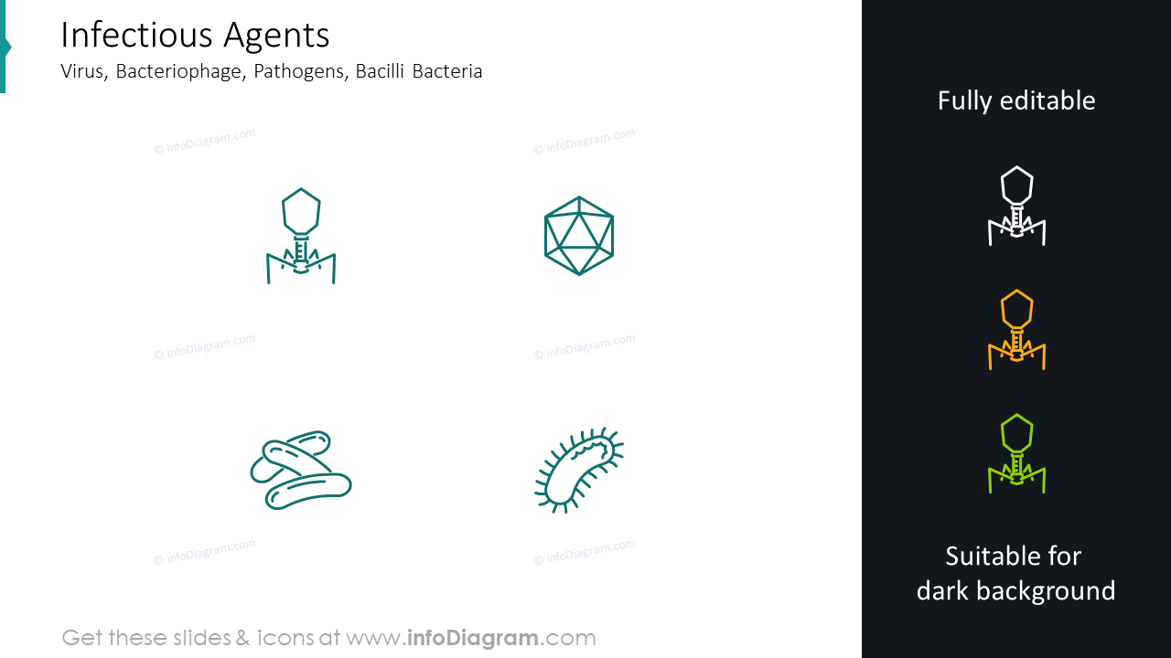 Infectious agentsvirus icons: bacteriophage, pathogens