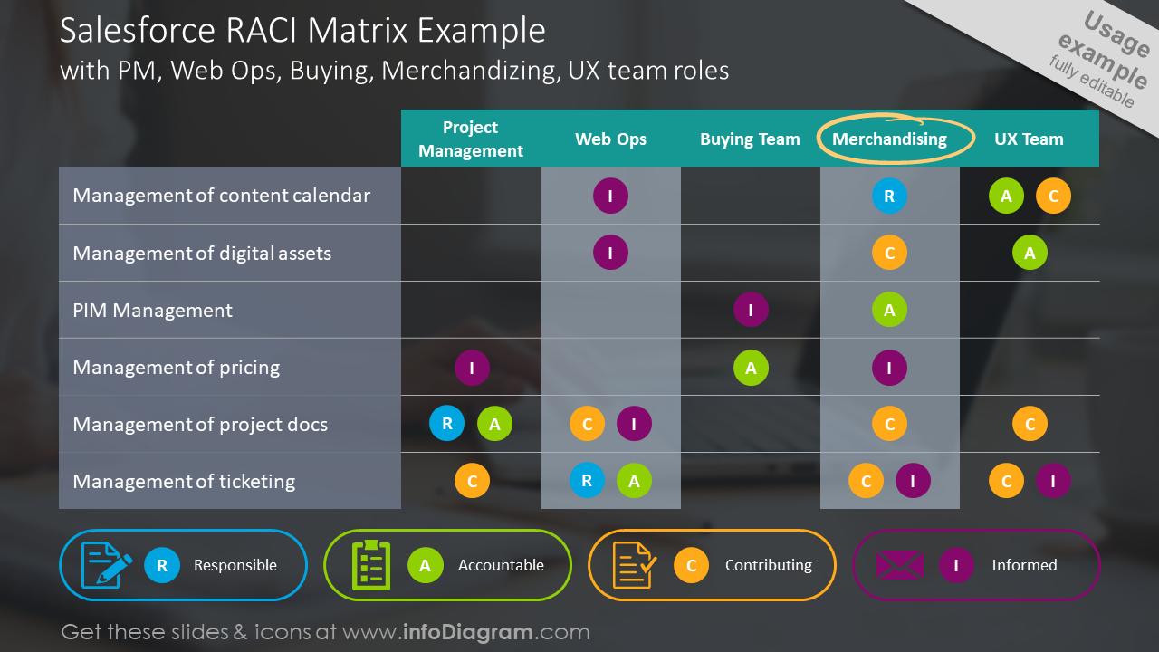 Salesforce RACI matrix example slide