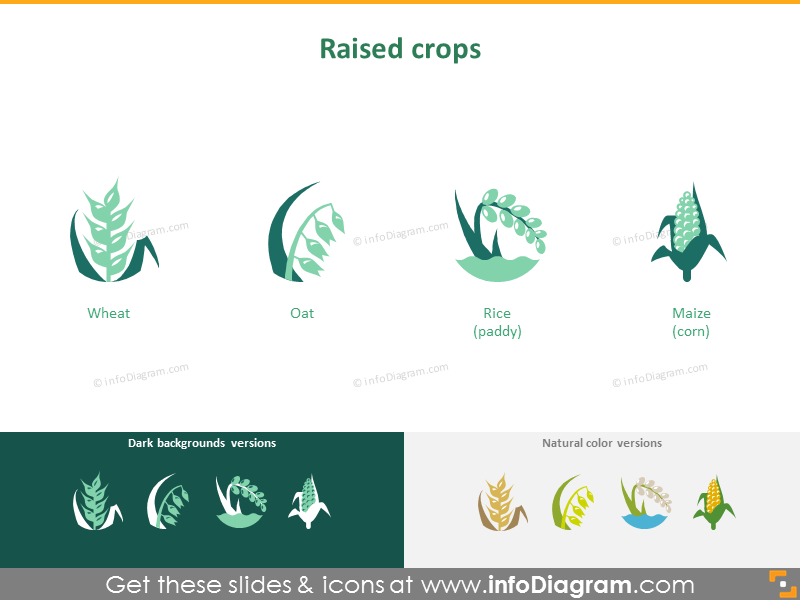 Crop cultivation: raised crops