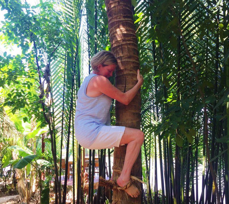 climb-coconut-tree-mekong-delta