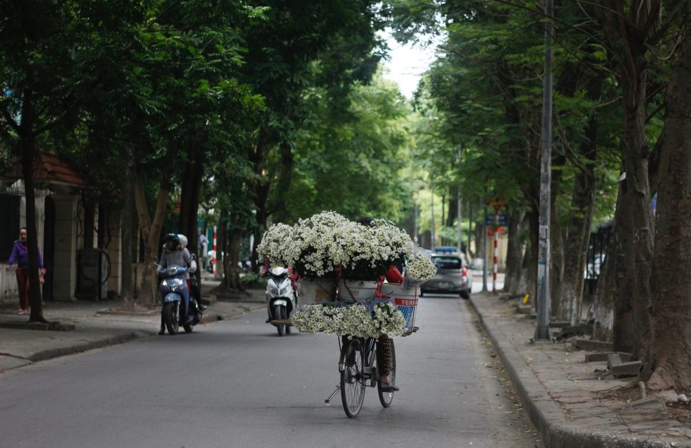 Ho Chi Minh City vs Hanoi: 6 highlights and you'll get your perfect choice
