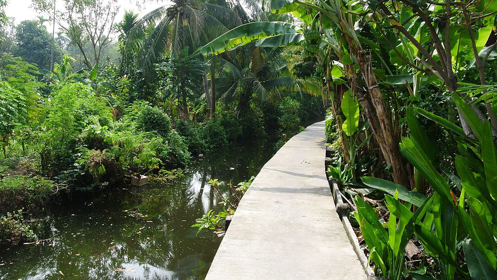 bang kachao