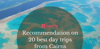 day trips from cairns