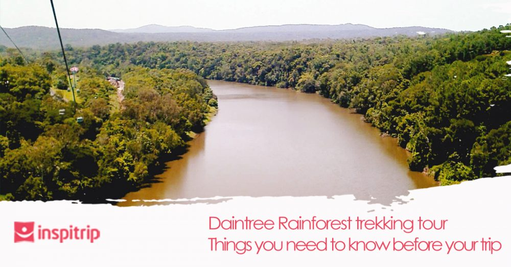 Important things you should know about the Daintree Rainforest trekking tours