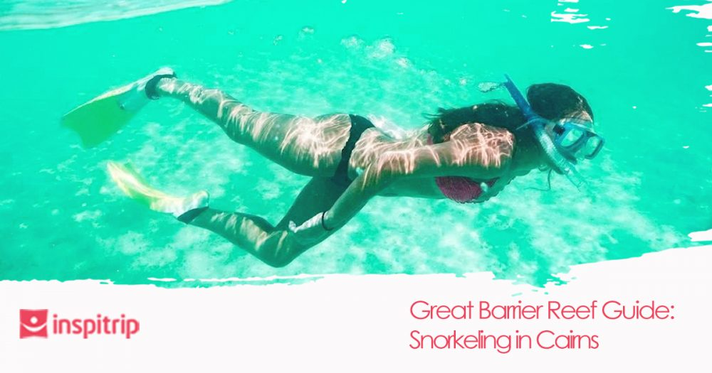 Where to go snorkeling in Cairns: The great barrier reef guide