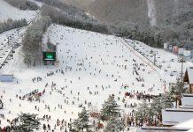 ski resorts from Seoul