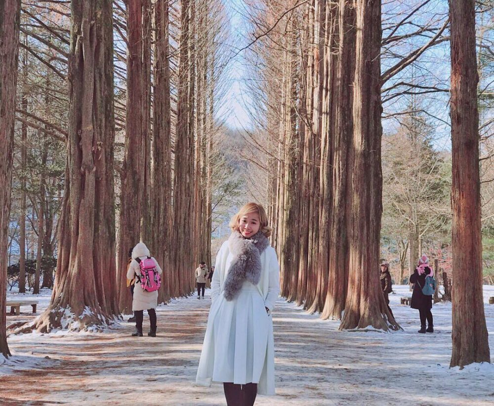 An amazing day trip to Nami Island