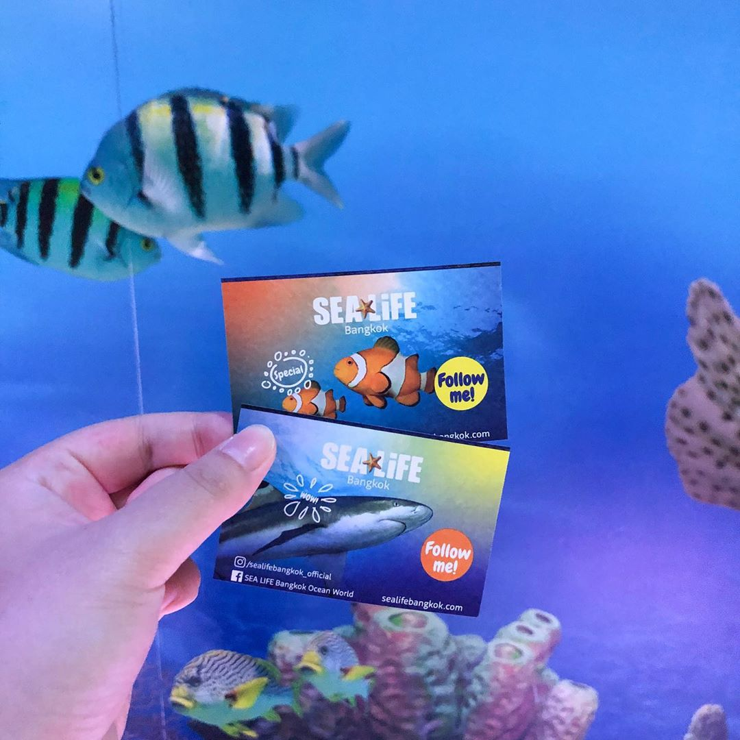 tickets to Sea Life Bangkok Ocean World