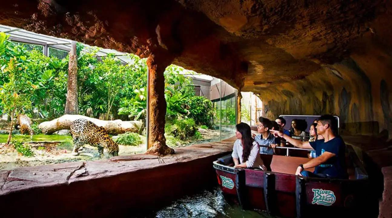 Travel to Singapore - River Safari
