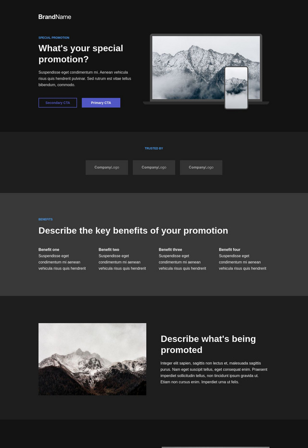 Special Promotion Landing Page 4