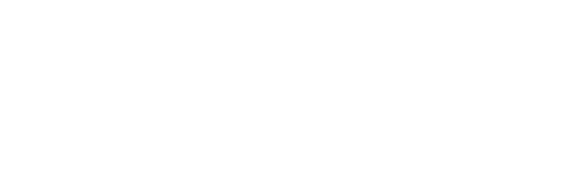 Kaufparts, venta de repuestos online