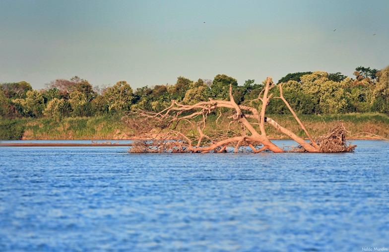 Foto do Rio Araguaia