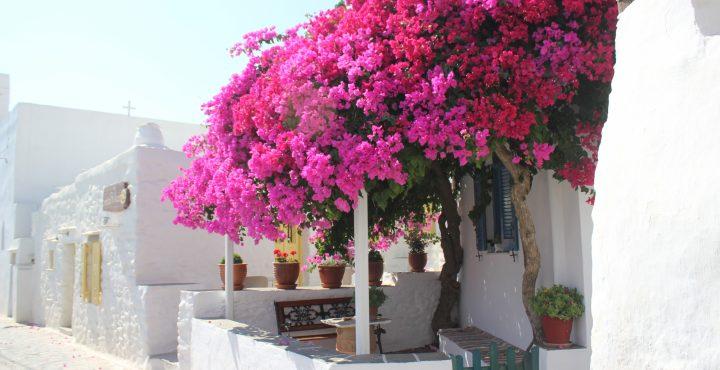 Ons avontuur op de Cycladen