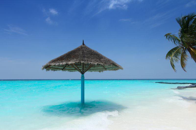strandvakantie zuid afrika interfact travelbeste reistijd voor een gecombineerde safari en strand reis zuid afrika