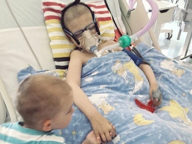 Jego komórki mogą zniszczyć raka - Zdjęcie główne