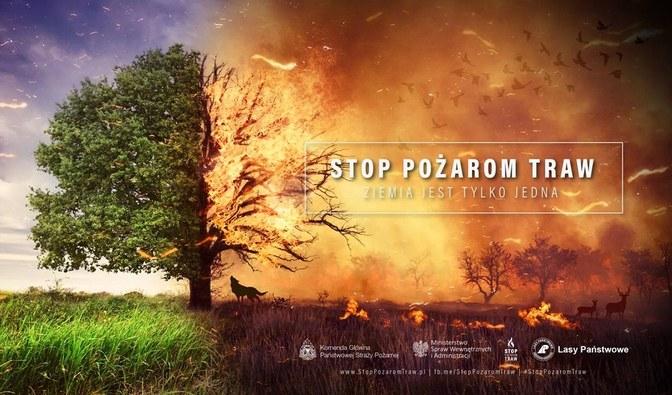 Nie wypalajcie traw! - Zdjęcie główne