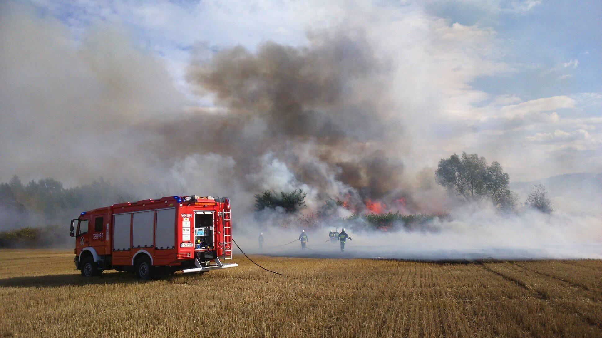 Strażacy nie poświętują - Zdjęcie główne