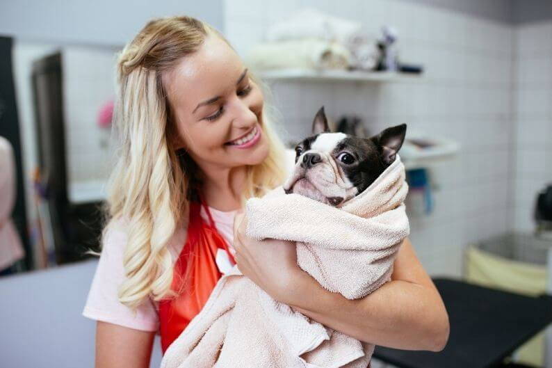 A pet grooming franchise owner checks in with her client after a grooming session.