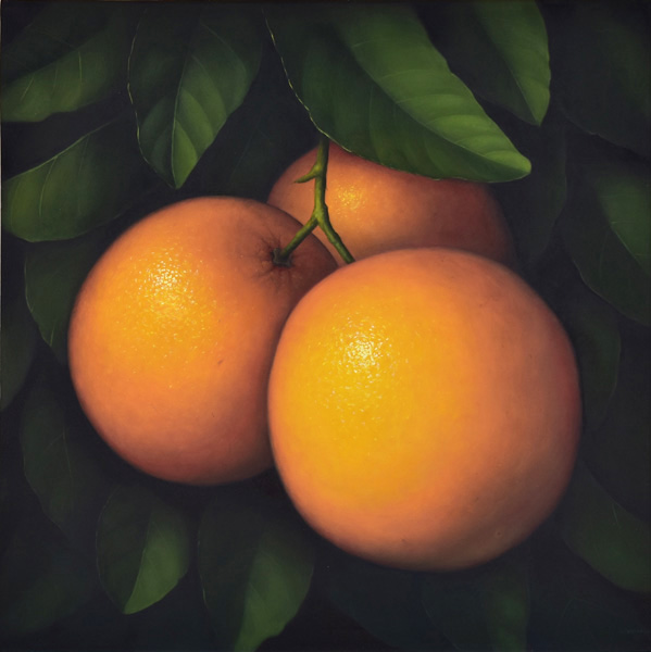 Art work by Gustavo Valenzuela, Oranges with leaves, painting, 43 1/4 x 43 1/4 inches (110 x 110 cm)