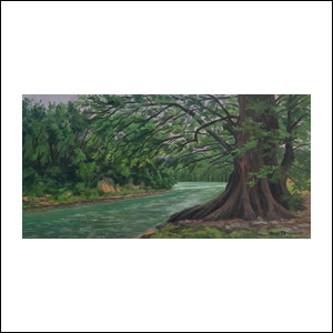 Art work by Jorge Obregon, The Big Sabino Tree on the Guadalupe River (Texas), painting, 12 x 24 inches (30 x 60 cm)