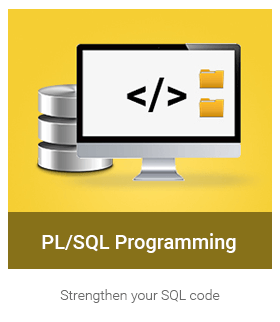Learn PL/SQL Programming