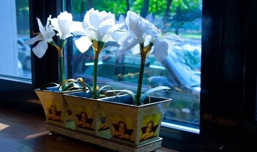 Кафе на 25 персон в ЦАО, м. Сретенский бульвар, м. Тургеневская, м. Чистые пруды, м. Сухаревская, м. Трубная от 3000 руб. на человека