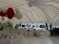 Свадебные залы на 50 человек