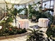 Свадебные рестораны метро смоленская