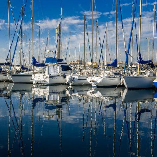 Ladd's Landing Marina