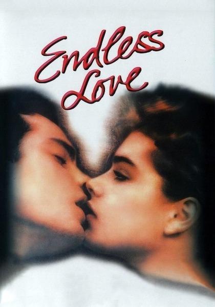 Amor Sin Fin Endless Love
