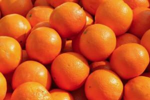 Rubano 400 kg di arance ma vengono sorpresi dai Carabinieri: denunciati 4 tarantini