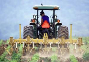 Lavoro, con +4,2% agricoltura batte industria e servizi