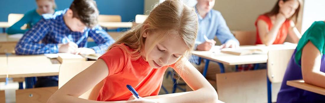 ثبت نام در مدارس دولتی ترکیه ،تحصیل رایگان در این کشور!