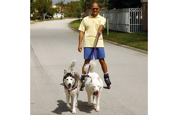 A men roller blading in a neighborhood with two dogs who are on leashes in front of him