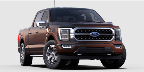 Ford F-150 Platinum Power Equipment Group