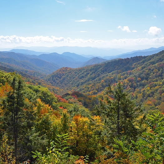 Photo of Great Smoky Mountains National Park