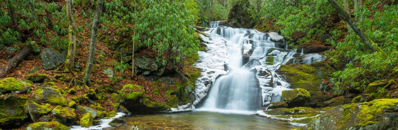 Photo of Rough Butt Creek Falls