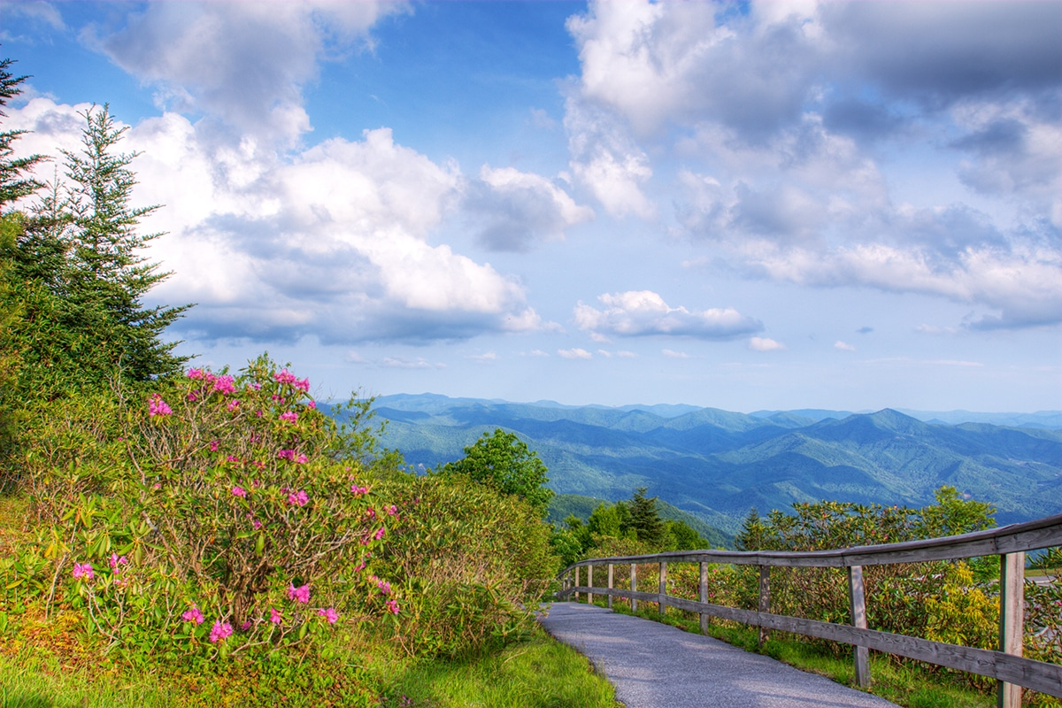 Done in a Day: Exploring the Southern Smokies from Sylva