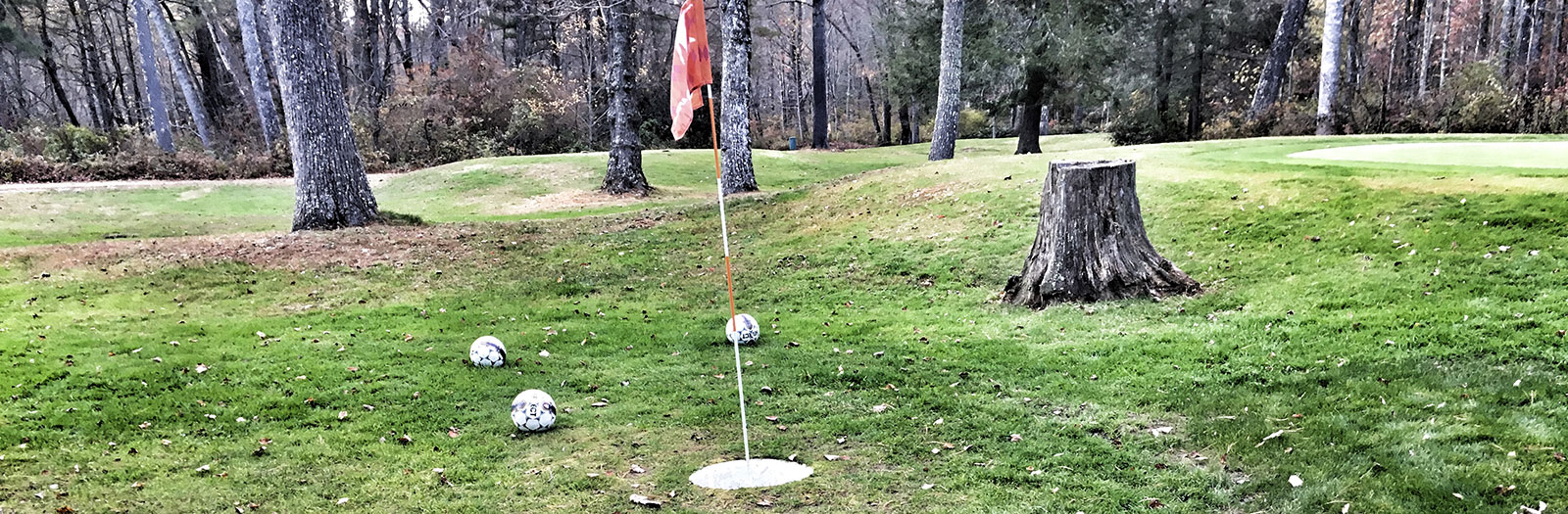 Photo of Red Bird Foot Golf