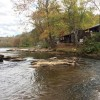 Laurel Bush Riverfront Cabins