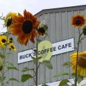 Scenic Photo at Buck's Coffee Café